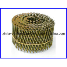 Eg/Mechanic Galvanized Coil Roofing Nail for Sale