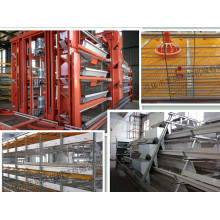 Galvanized Automatic H Frame Layer Cage Certificated with ISO9001