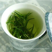 High Mountain Chinese Green Tea with Competitive Export Price
