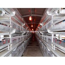les poulets d'élevage moyens de la cage de la batterie pour les couches
