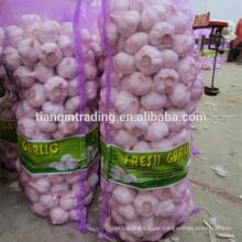 7,5 kg Beutel Knoblauch für die VAE