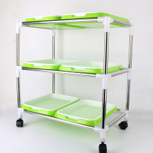 Indoor seedling frame with seedling trays for plant sprout