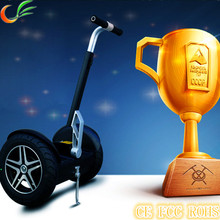 EEC Electric Scooter for Europe and Other Countries