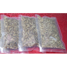 Dried Product Of Tenebrio Molitor