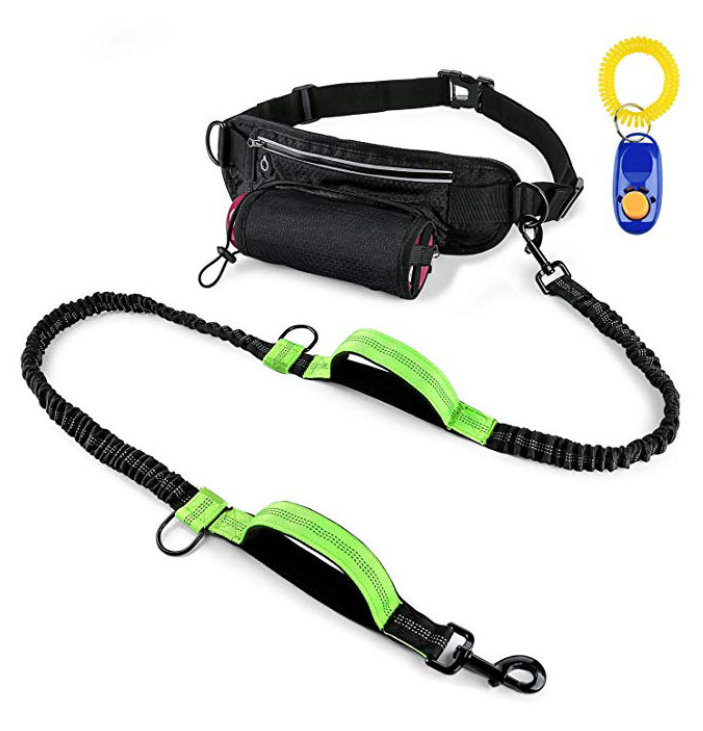 Bungee Hands Free Dog Leash