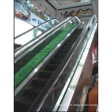 Aksen Escalator Indoor & Outer Door Type