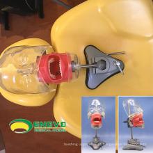 VENDA 12559 Tipo Sucker Phantom Medical Science Educacional Ensino Dental