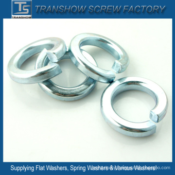 C1070 Steel Blue White Zinc Plated Spring Washers
