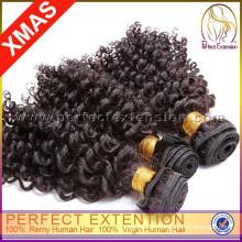 Schnelle und effiziente Lieferung Afro verworrene lockige menschliche Haarwebart