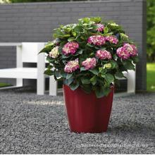 (BC-F1032) Fashionable Design Plastic Self-Watering Flower Pot