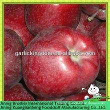 China fábrica de manzana roja de huaniu