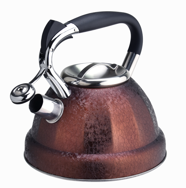 Induction Whistling Hot Water Tea Kettle 395