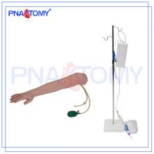 Modèle de main de piqûre d'artère avancée PNT-TA005