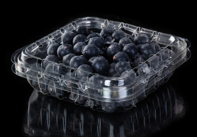Punnet Plastik Blueberry