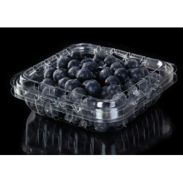 Contenitore a conchiglia in plastica PET per Blueberry