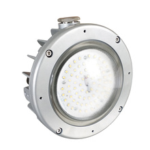 Chemical Industry Site Die-cast Aluminum 30w Explosion-proof Tube Led Work Light