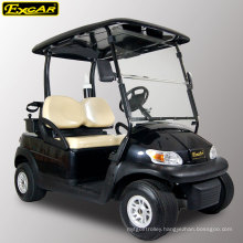 2 Seater Electric Golf Cart