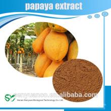 Pó quente do extrato da papaia da erva orgânica da venda quente para a saúde e a beleza