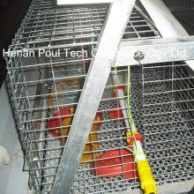 Chicken Farm Ausrüstung Brooder Chicken Cage