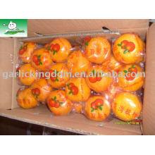 Sell big mandarin orange Brother Kingdom