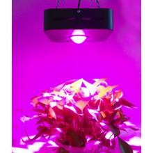 LED wachsen Lichter ufo 90 Watt Cob