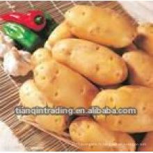 patate douce chinoise