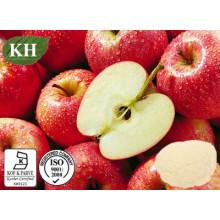 100% Natural Apple Pectina em Pó: Ácido Galacturônico 65% 10: 1