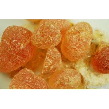 Acacia Gum with Best Price