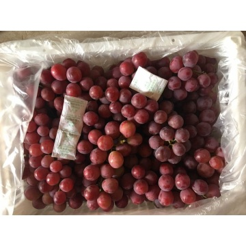 Export Quality Quality ya Fresh Grape Red