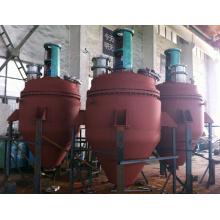 Équipement de séchage de mélange sous vide avec le ruban intérieur