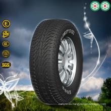 Vehículos Neumáticos Piezas de automóviles Neumáticos para automóviles de pasajeros