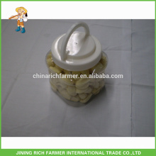 1LB X20/Ctn New Crop Top Quality Shandong Fresh Peeled Garlic