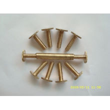 Top quality metal screw