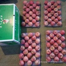 Nueva cosecha de Qinguan Apple está llegando