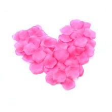 Pétales de pétales de pétales de rose colorés