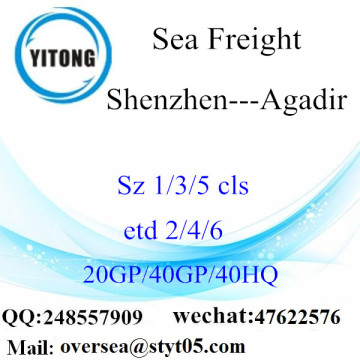 Shenzhen Port Sea Freight Shipping Para Agadir