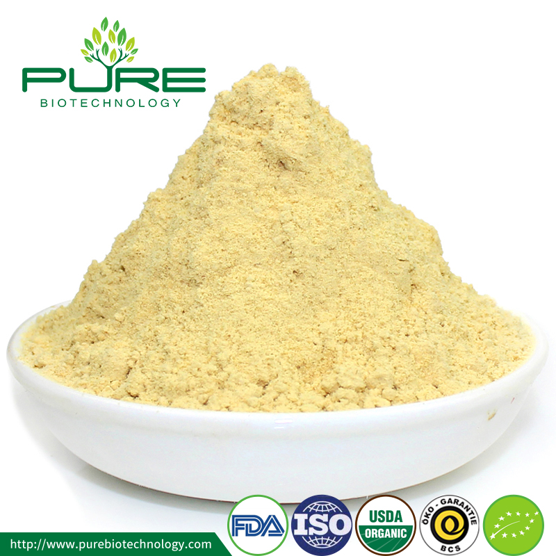 Food grade dehydrated Organic Ginger extract powder