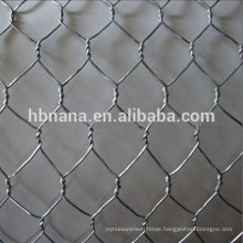 Galvanized Hexagonal Wire Mesh / Gabion Mesh / hexagonal chicken coop wire netting