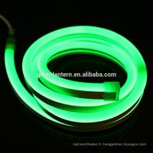la bande flexible a mené la lumière au néon RGB 220V 2835 imperméable