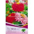 FL01 2018 nuevas semillas de flores color de rosa diferentes tipos de semillas de flores para la venta