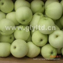 Nova colheita fresca de maçã dourada grau ae B