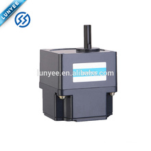 Permanent magnet low voltage brushless dc motor 24v 500w
