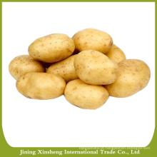 Variedades de batata