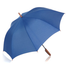 Auto Open Pure Color Wood Handle Straight Umbrella (BD-33)