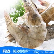 HL002 exportadores mariscos salvajes capturados congelados camarón vannamei iqf