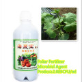 seaweed extract fertilizer