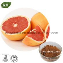 Grapefruit Seed Extract 10: 1 Powder
