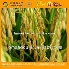 Reis Bakterizid weiß ropy und flüssige Suspension Carbendazim WP
