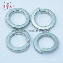 Fastener/Washer/Spring Washer with Good Quality