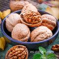 Productos agrícolas al por mayor nueces nueces naturales